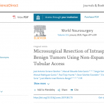 Microsurgical Resection of Intraspinal Benign Tumors Using Non-Expansile Tubular Access